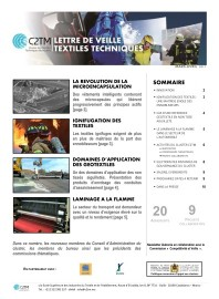 Apercu_Newsletter_N°2